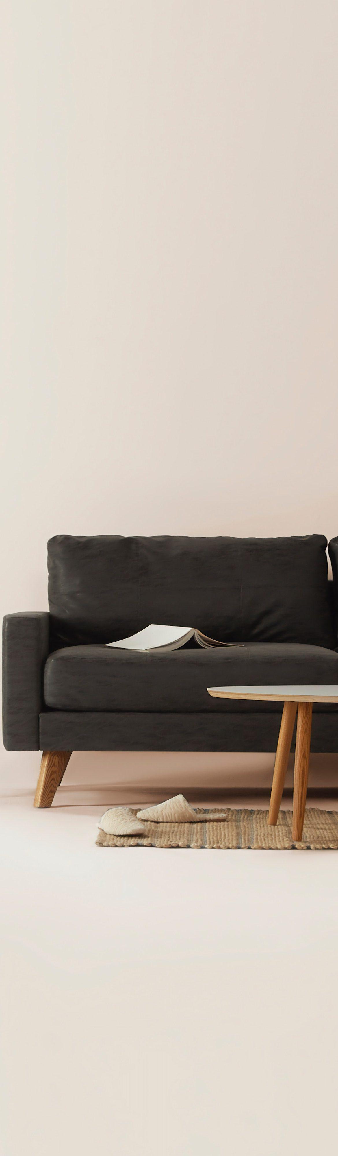 kárpittisztítás, kanapé minimál otthonban és dísznövény